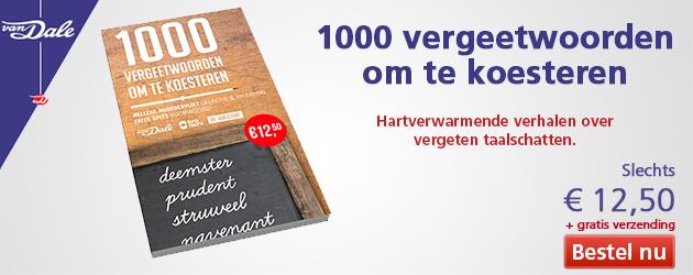 moeilijke nederlandse zinnen vertalen